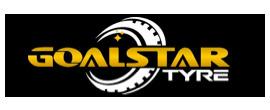 Goalstar logo